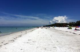 貝殼灰岩Beach1