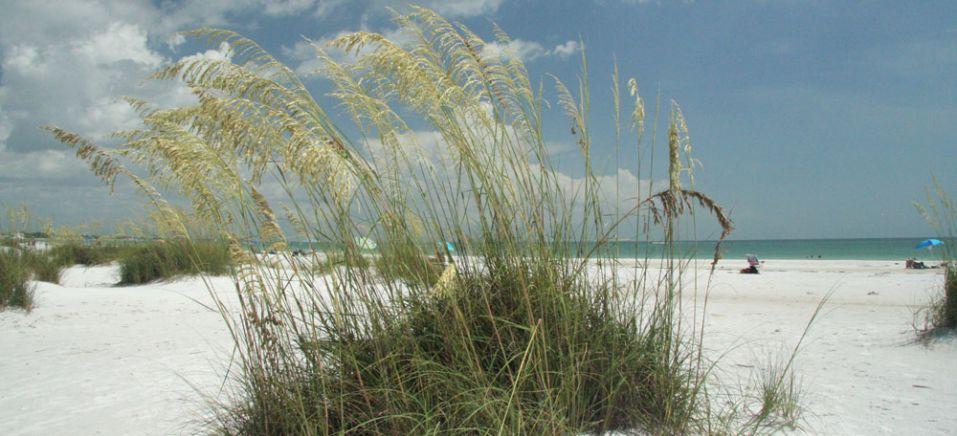 ファイン砂浜