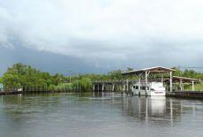 Everglades13